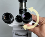Setting the microscope's interpupillary distance