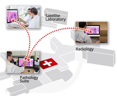How SPOTMeeting Enables Interactive Telepathology